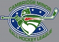 Cambridge Minor Playoff Schedule