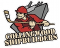 Collingwood Minor Ball Hockey