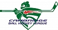 Cambridge Men's Ball Hockey League