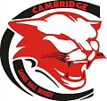 Cambridge Ladies Ball Hockey League
