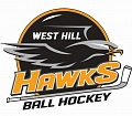 West Hill Minor Ball Hockey