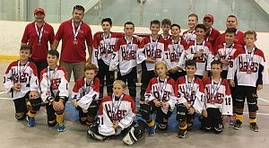 Atom AA Capture Silver