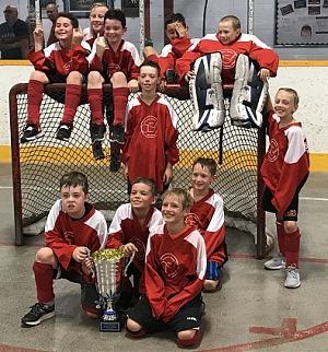 Cardinals Win Novice A Title